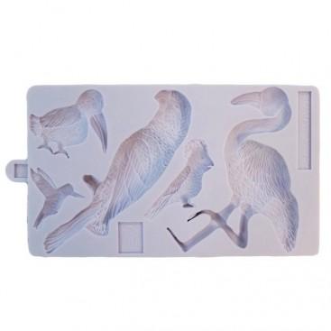 Karen Davies silikoninė tropinių paukšcių formelė