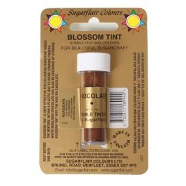 Sugarflair šokolado spalvos birūs sausi dažai - 7ml